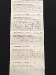 H30-natu-anket075-2.jpg